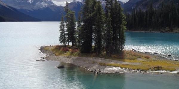 ג'ספר וסביבותיה – אגם מאלין, ספיריט איילנד, מפלי אטבסקה ועוד
