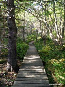 מסלולי הליכה נובה סקוטיה