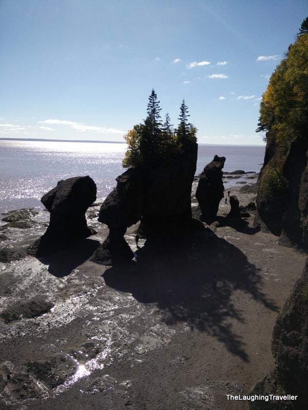 הופוול רוקס, מפרץ פאנדי