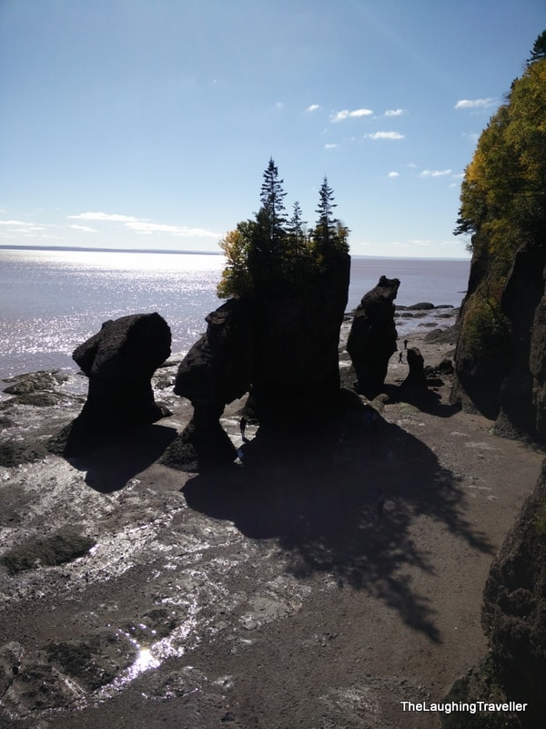 מפרץ פאנדי