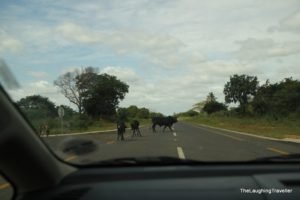 טיול למוזמביק